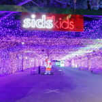 sids-and-kids-christmas-lights2